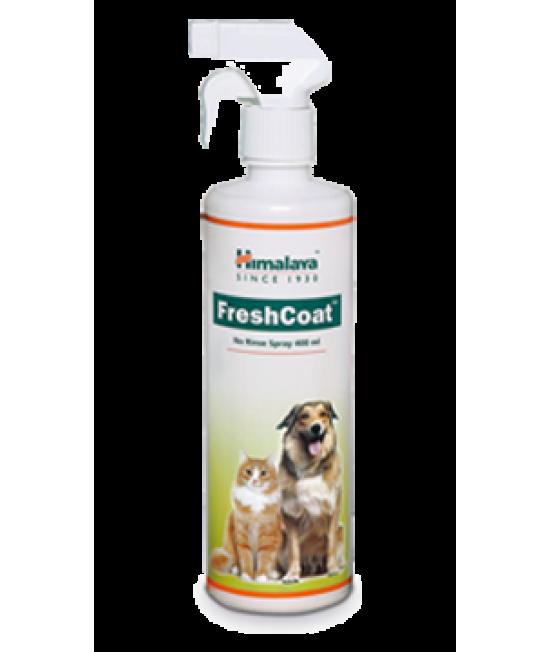 FreshCoat